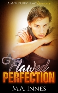 Flawed_Perfection