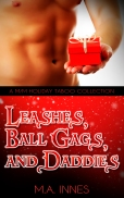 Leashes_Ball_Gags_and_Daddies