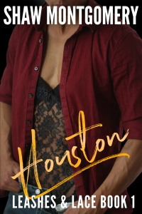 houston ebook cover